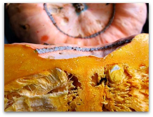 pumpkin hominy soup pumpkins