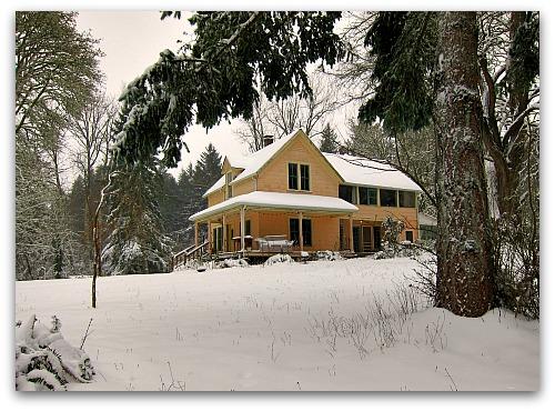 snow day at Tall Clover Farm