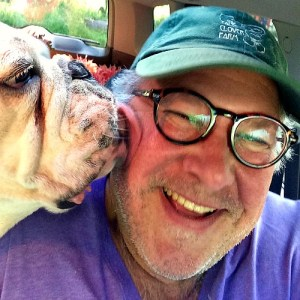 bulldog buddy kissing tom at tall clover farm