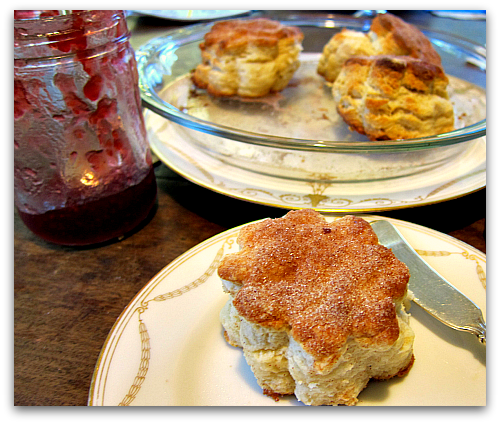 freshly baked homemade biscuit