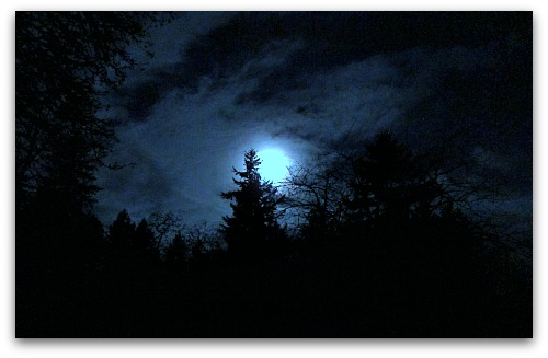 Beguiled by a Month of Full Moons