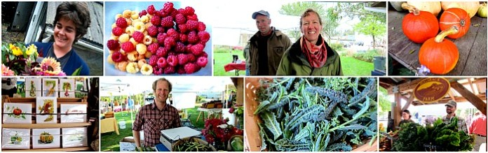 vashon farm stands