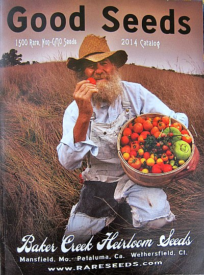so many seed catalogs so little time