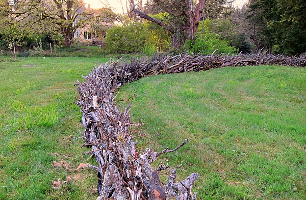 Just like my front field fence, the days are getting longer.