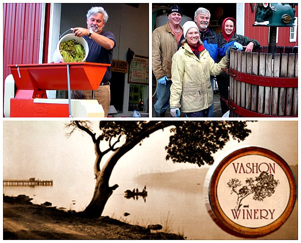 photos: Vashon Winery
