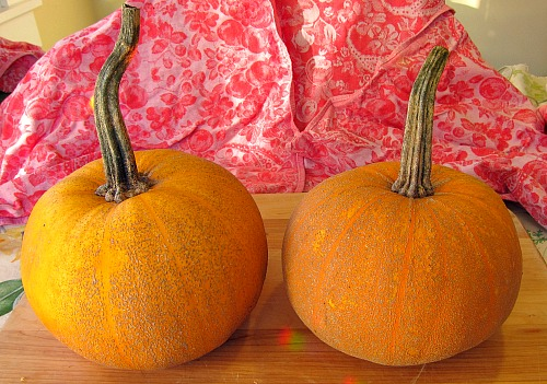 Winter Luxury Pie pumpkin, four pounds a piece