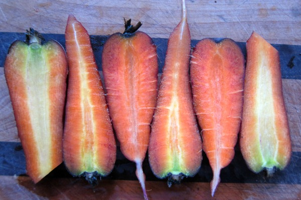 sliced carrots