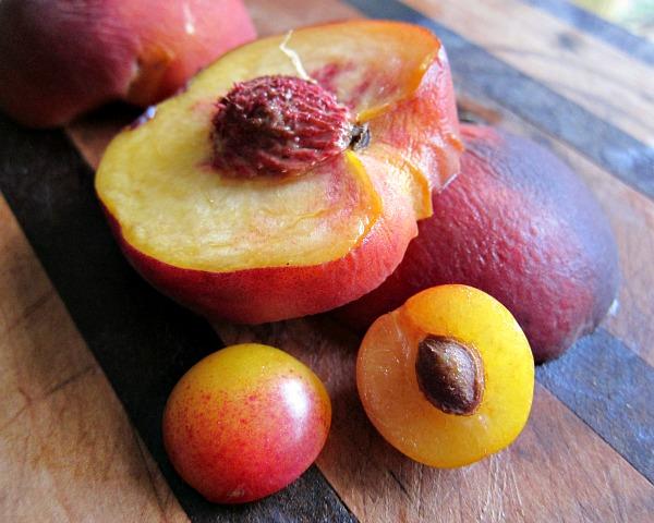 mirabelle plum pit peach