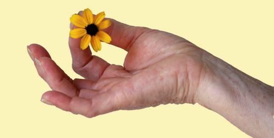 Yoga Salud y Consciencia
