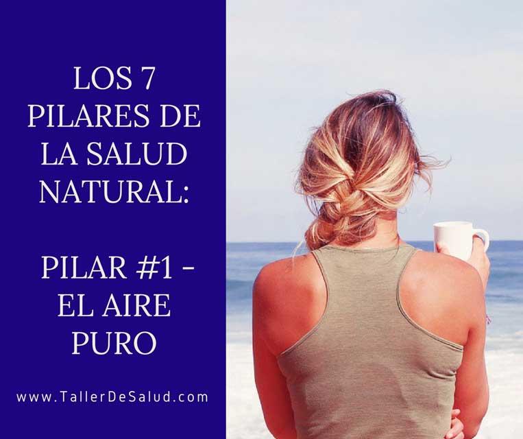 7-Pilares-El-Aire-Puro