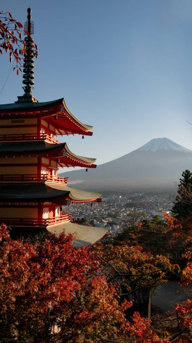 Cheap flights from Houston to Tokyo for $346 return in January 2021!