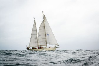 UraniaBelfast tall ships race 2015,photos of tall ships