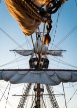 Sail Amsterdam,The Swedish Ship Gotheborg