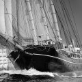 Sound of Bressay. Lerwick to Stavanger tall ships race 2011