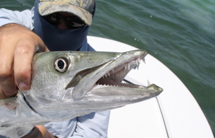 Best Fishing Places in Florida