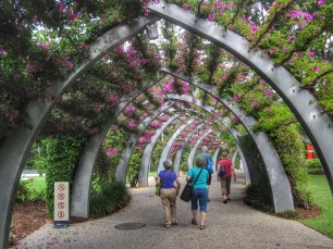 The Grand Arbour - a 1km long walkway