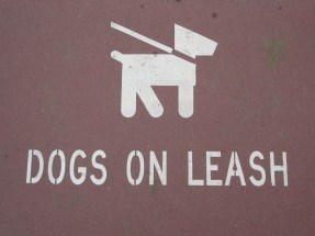 Attention dog walkers