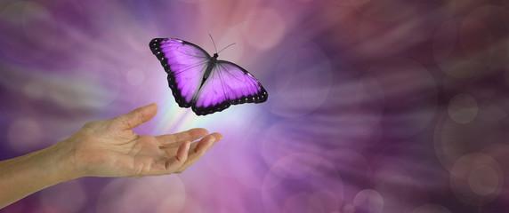 Affinez vos perceptions & intégrez ces outils de channeling dans votre quotidien ou dans vos soins.