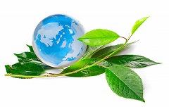 エコの世界