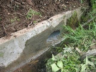 側溝に排水用の穴加工