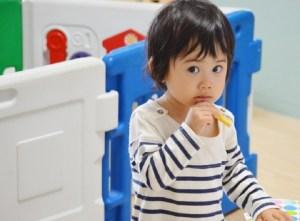 保育園幼稚園での懇談会