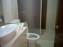 IMG03842-20121208-0943