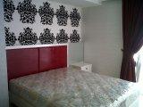 IMG03845-20121208-0943
