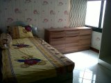 IMG03846-20121208-0943