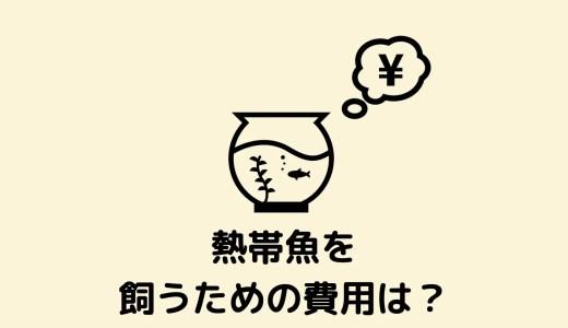 【1万円で始めよう!】熱帯魚の飼育に必要な費用はいくら?初心者向けに解説!