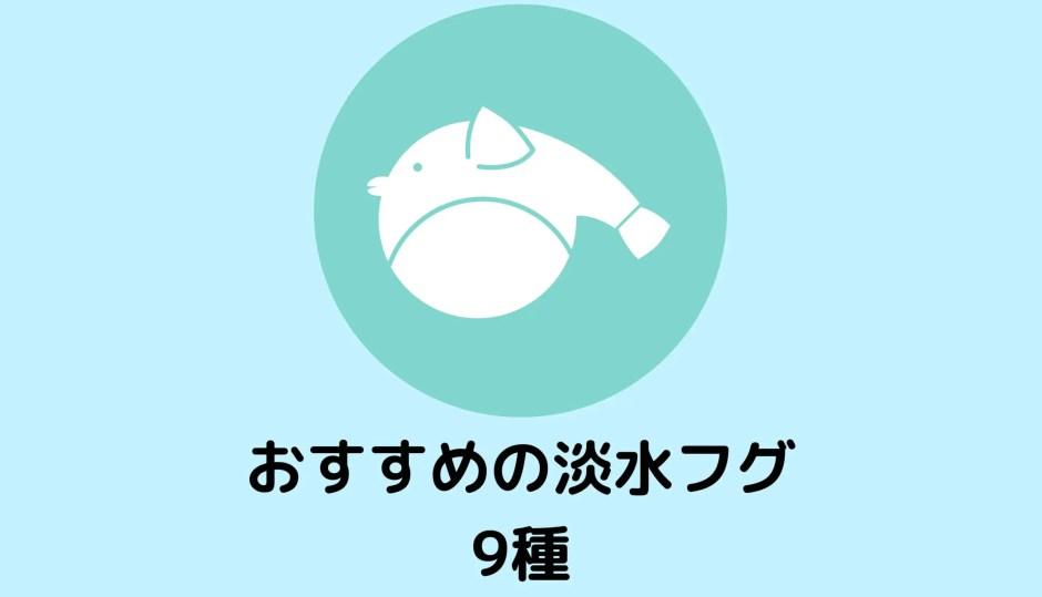 おすすめの淡水フグ9種