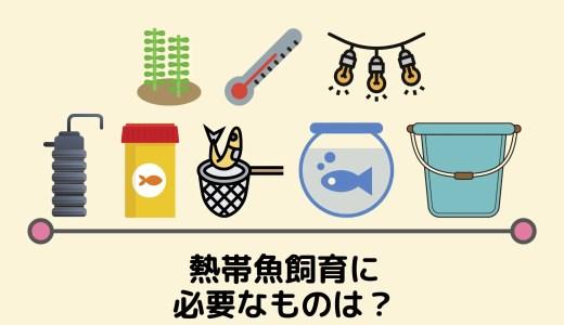 【熱帯魚飼育に必要なものは最低5個!】初心者向けにゼロから教えます。