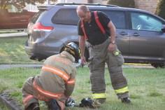 House Fire, 14 West Cherry Street, Tresckow, 8-17-2015 (108)