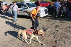 Search for Missing Man, South Ward Mountain, Tamaqua, 8-13-2015 (310)