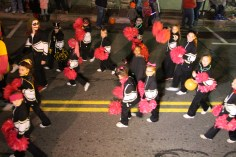 Tamaqua Lions Club Halloween Parade, Broad Street, Tamaqua, 10-27-2015 (211)