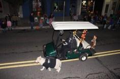 Tamaqua Lions Club Halloween Parade, Broad Street, Tamaqua, 10-27-2015 (229)