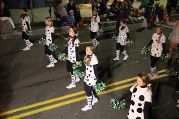 Tamaqua Lions Club Halloween Parade, Broad Street, Tamaqua, 10-27-2015 (349)