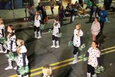 Tamaqua Lions Club Halloween Parade, Broad Street, Tamaqua, 10-27-2015 (352)