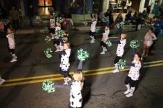 Tamaqua Lions Club Halloween Parade, Broad Street, Tamaqua, 10-27-2015 (355)