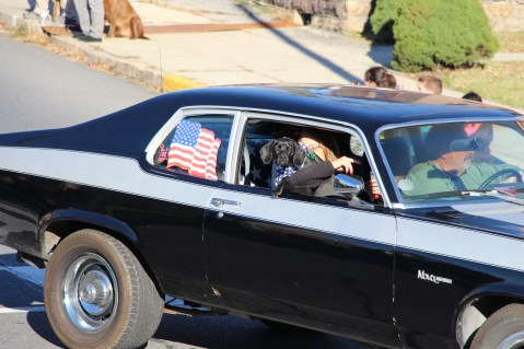 Carbon County Veterans Day Parade, Jim Thorpe, 11-8-2015 (438)