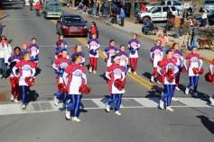 Carbon County Veterans Day Parade, Jim Thorpe, 11-8-2015 (88)
