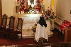 Little Flower Shower of Roses, Our Lady of Mount Carmel Church, Nesquehoning (167)