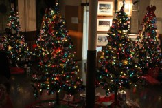 Tree Festival, Voting, Tamaqua Community Arts Center, Tamaqua, 12-4-2015 (17)
