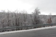 winter-wonderland-ice-on-trees-along-sr54-and-interstate-81-barnesville-1-24-2017-21