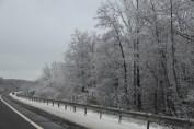 winter-wonderland-ice-on-trees-along-sr54-and-interstate-81-barnesville-1-24-2017-32