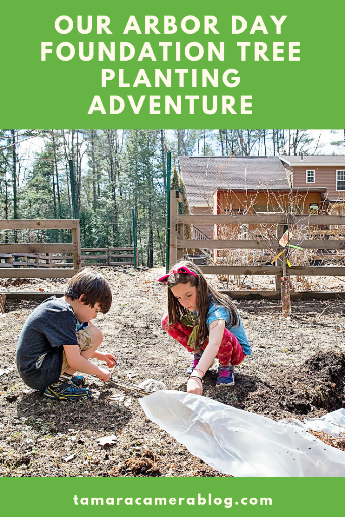 Our tree planting adventure with the Arbor Day Foundation is a wonderful family activity - from selecting a tree from #ArborDayTreeNursery - to planting #ad