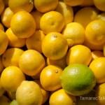 011012lemon lime