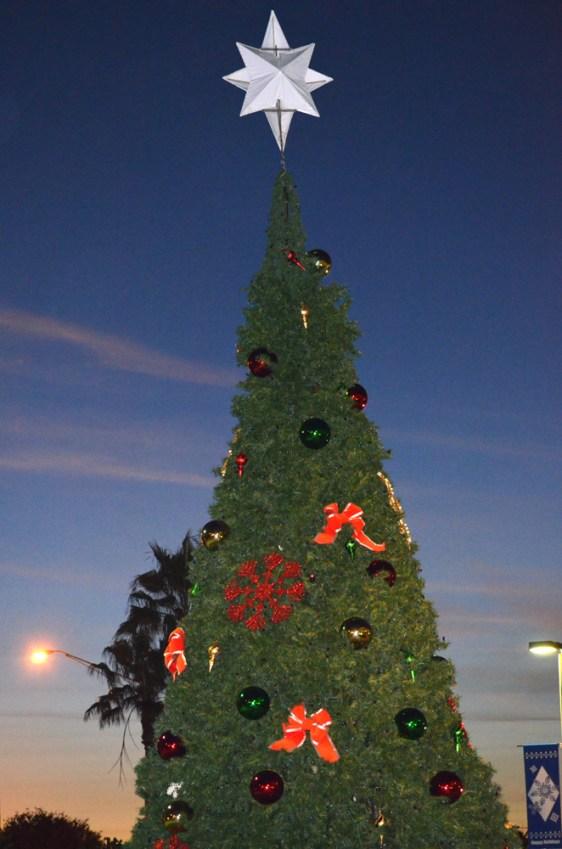Tamarac-Christmas