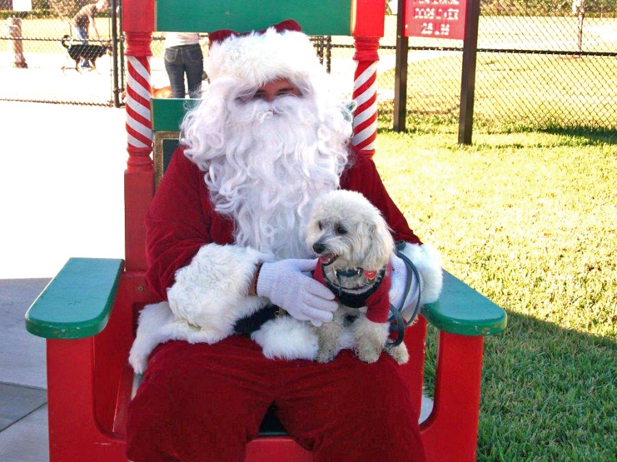 Paws with Claus event in Tamarac - photo courtesy City of Tamarac.