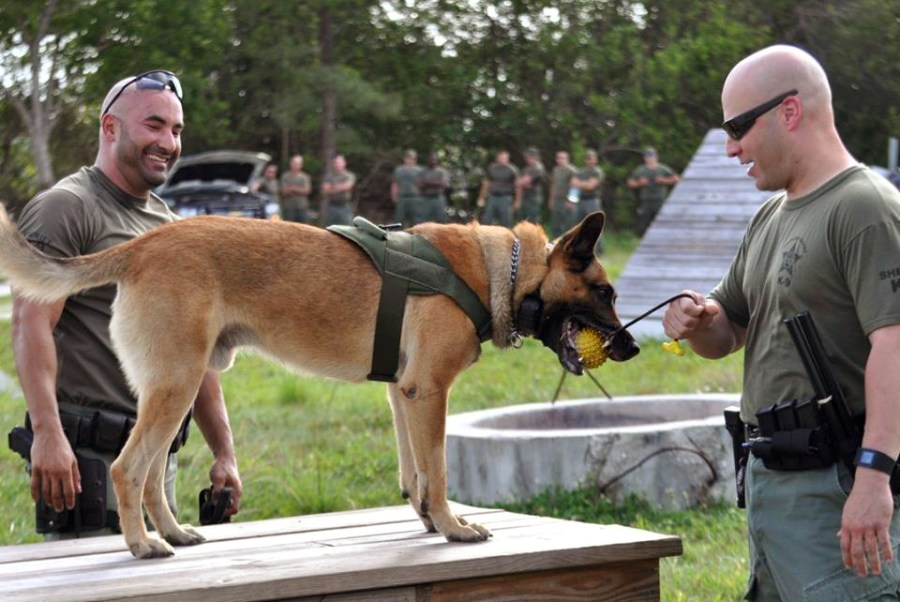 BSO K9 Officers - photo courtesy Broward Sheriff's Office.