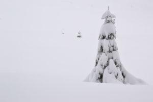 winter mind